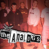 The Analogs