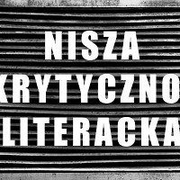 Nisza Krytycznoliteracka